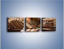 Obraz na płótnie – Chleb w roli głównej – trzyczęściowy JN501W1