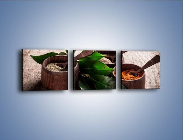Obraz na płótnie – Przyprawy wśród zieleni – trzyczęściowy JN542W1