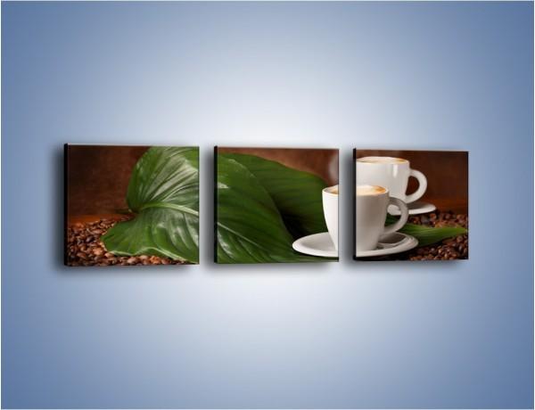 Obraz na płótnie – Kawa na eukaliptusie – trzyczęściowy JN576W1