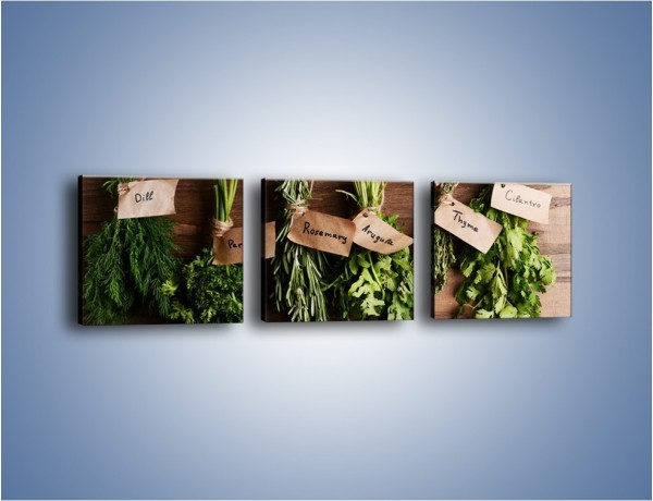 Obraz na płótnie – Świeże zioła w kuchni – trzyczęściowy JN638W1