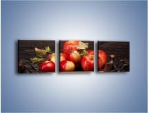 Obraz na płótnie – Dojrzałe jabłka na stole – trzyczęściowy JN653W1