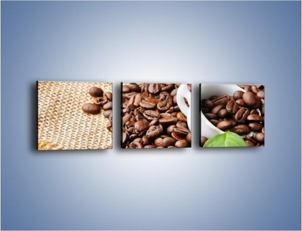 Obraz na płótnie – Liść na kawie – trzyczęściowy JN688W1