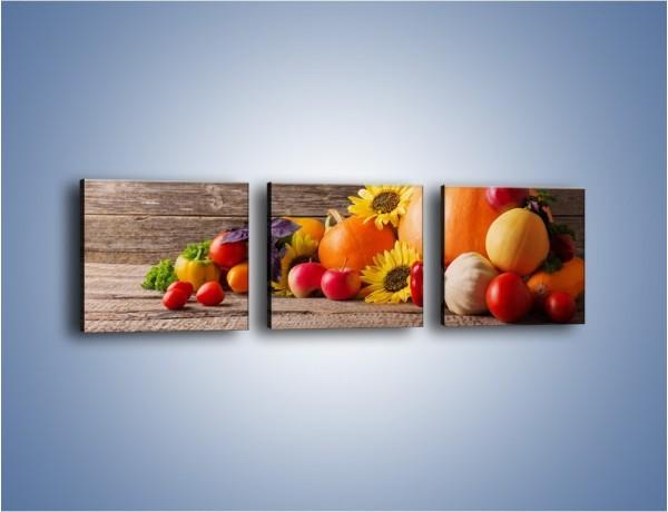 Obraz na płótnie – Dynia wśród warzyw – trzyczęściowy JN702W1