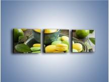 Obraz na płótnie – Cytrynowo-limonkowe ciasteczka – trzyczęściowy JN724W1