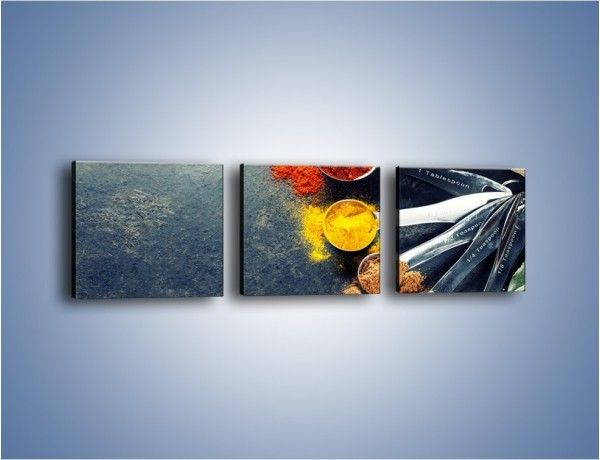 Obraz na płótnie – Zmielone przyprawy w miarkach – trzyczęściowy JN735W1