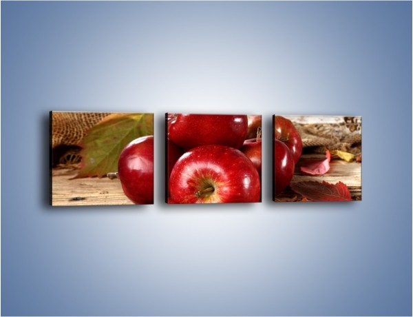 Obraz na płótnie – Dojrzałe jabłka porą jesienną – trzyczęściowy JN741W1