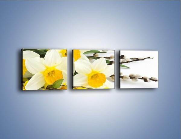 Obraz na płótnie – Wielkanocne bazie i żonkile – trzyczęściowy K002W1