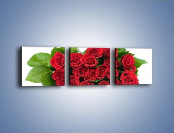 Obraz na płótnie – Idealna wiązanka czerwonych róż – trzyczęściowy K018W1