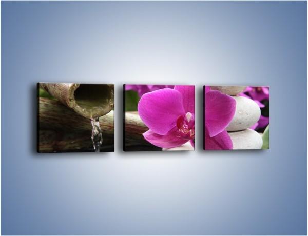 Obraz na płótnie – Różowy storczyk i białe kamienie – trzyczęściowy K026W1