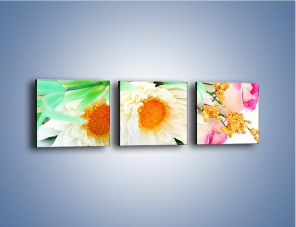 Obraz na płótnie – Róża wśród bieli – trzyczęściowy K085W1