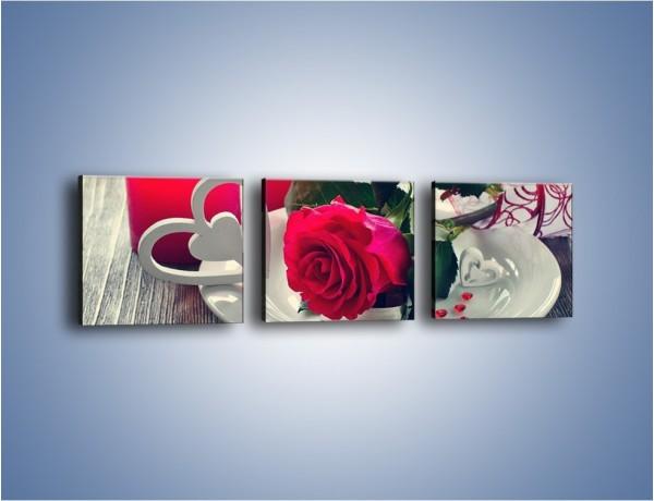 Obraz na płótnie – Talerz pełen miłości – trzyczęściowy K1009W1