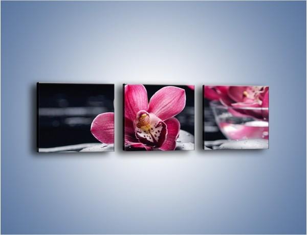 Obraz na płótnie – Kwiat i jego przyjaciele – trzyczęściowy K1014W1