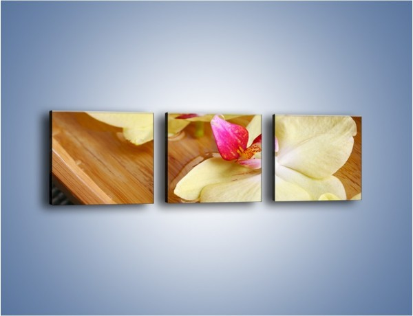 Obraz na płótnie – Drewniana łódeczka z kwiatami – trzyczęściowy K1024W1