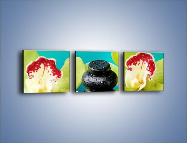 Obraz na płótnie – Żółty zielony i kwiat – trzyczęściowy K1025W1