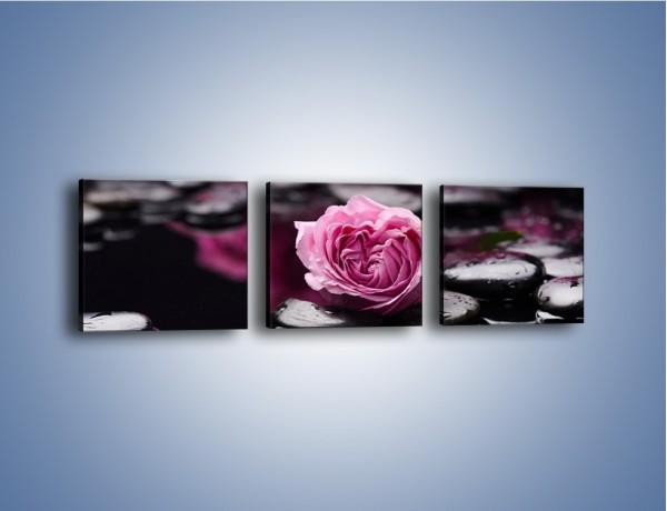 Obraz na płótnie – Kwiat z przyjaciółmi w oddali – trzyczęściowy K1028W1