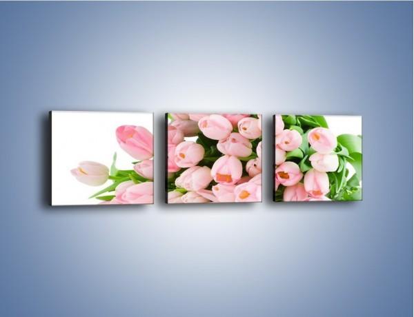 Obraz na płótnie – Wiosna w tulipanach – trzyczęściowy K182W1