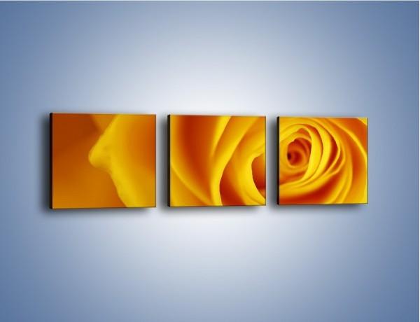 Obraz na płótnie – Kwiaty w kolorze zimy – trzyczęściowy K191W1