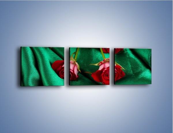 Obraz na płótnie – Krok w stronę róży – trzyczęściowy K269W1