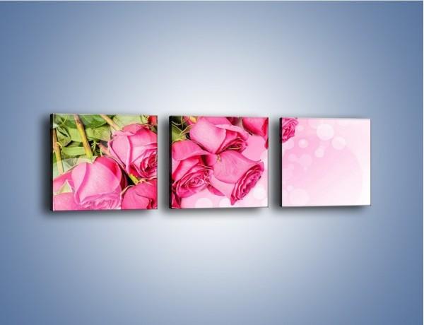 Obraz na płótnie – Róże do góry nogami – trzyczęściowy K270W1
