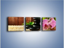 Obraz na płótnie – Bambus storczyk i kamienie – trzyczęściowy K279W1