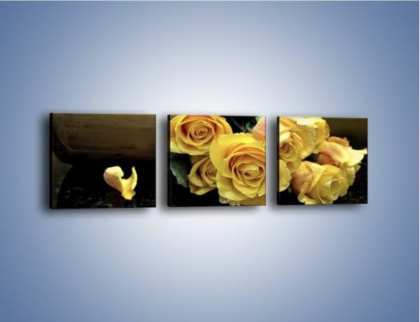 Obraz na płótnie – Zapomniane róże – trzyczęściowy K334W1