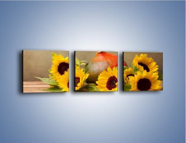 Obraz na płótnie – Słoneczniki w jesiennym klimacie – trzyczęściowy K418W1