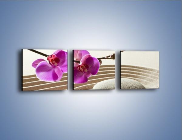 Obraz na płótnie – Kwiat i pustynia – trzyczęściowy K434W1