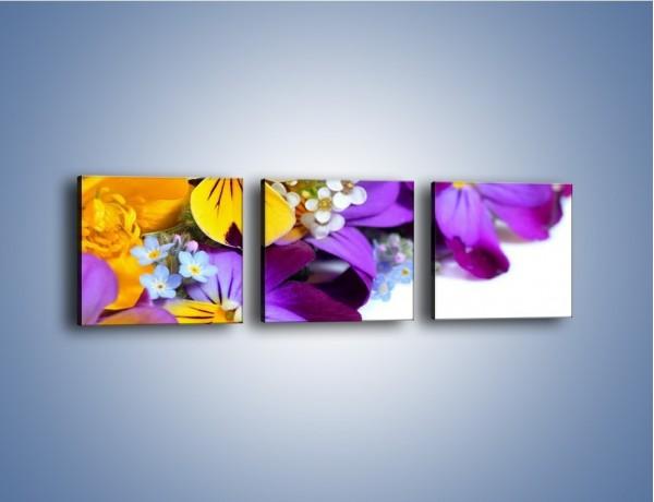 Obraz na płótnie – Ciepłe kolory w kwiatach – trzyczęściowy K442W1
