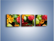 Obraz na płótnie – Bukiet pełen soczystych kolorów – trzyczęściowy K461W1