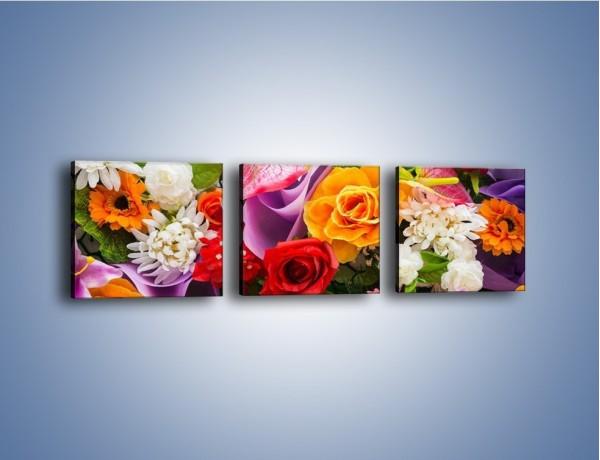 Obraz na płótnie – Kwiaty w kolorze tęczy – trzyczęściowy K462W1