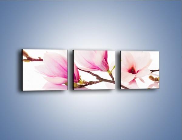 Obraz na płótnie – Lekkość w kwiatach wiśni – trzyczęściowy K485W1