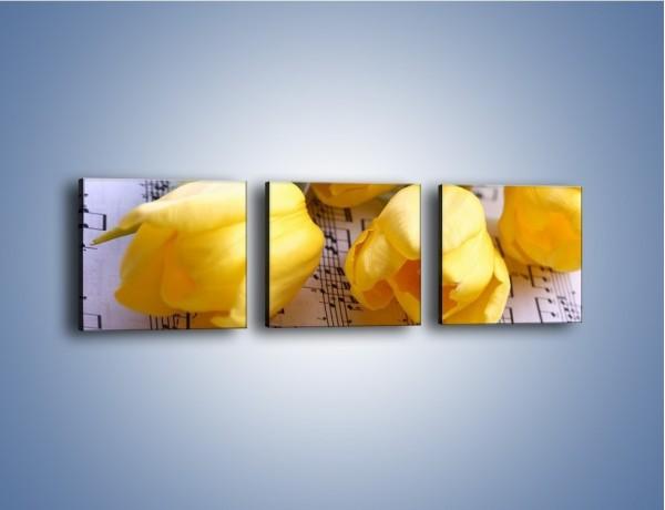 Obraz na płótnie – Tulipanowe nuty – trzyczęściowy K486W1