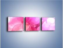 Obraz na płótnie – Budzący dzień w różowym kwiecie – trzyczęściowy K487W1