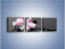 Obraz na płótnie – Czarna tafla z kwiatem – trzyczęściowy K520W1