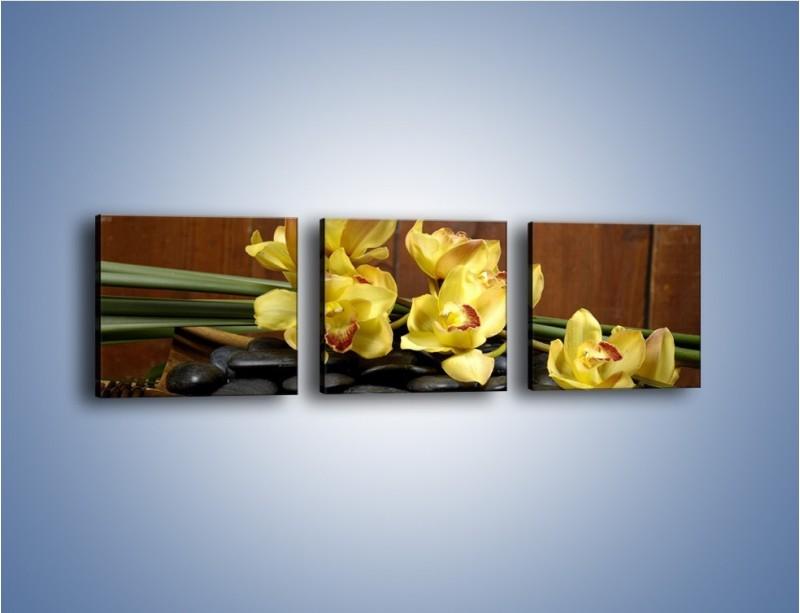 Obraz na płótnie – Kwiaty na drewnianym naczyniu – trzyczęściowy K575W1