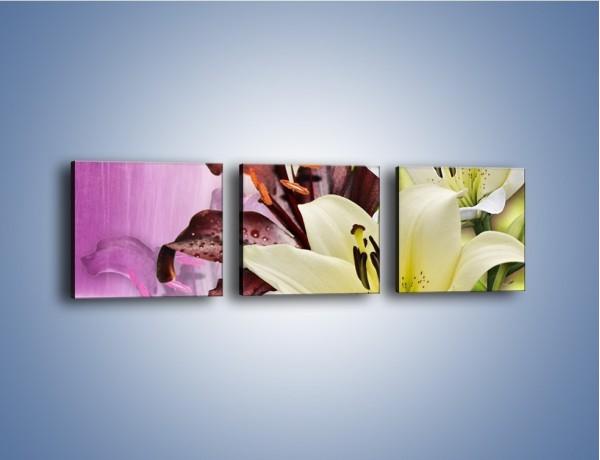 Obraz na płótnie – Podwójna twarz lilii – trzyczęściowy K584W1