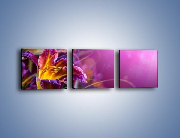 Obraz na płótnie – Zaczarowany kwiat – trzyczęściowy K586W1