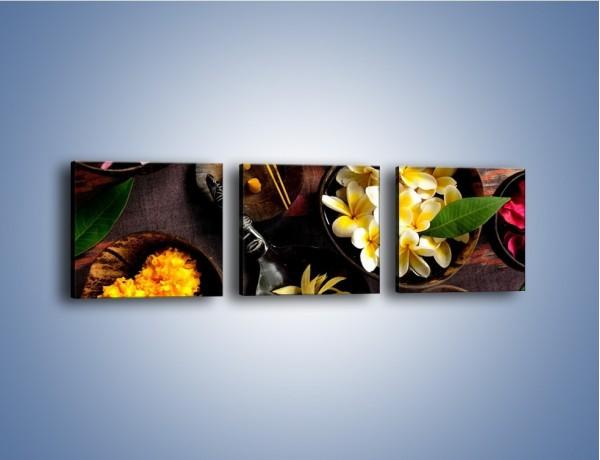 Obraz na płótnie – Misy pełne płatków – trzyczęściowy K620W1