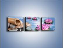 Obraz na płótnie – Baśniowy świat kwiatów – trzyczęściowy K624W1