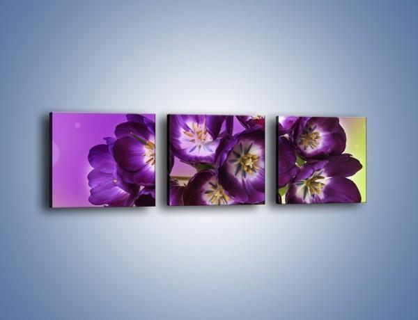 Obraz na płótnie – Fioletowe kwiaty w powietrzu – trzyczęściowy K630W1
