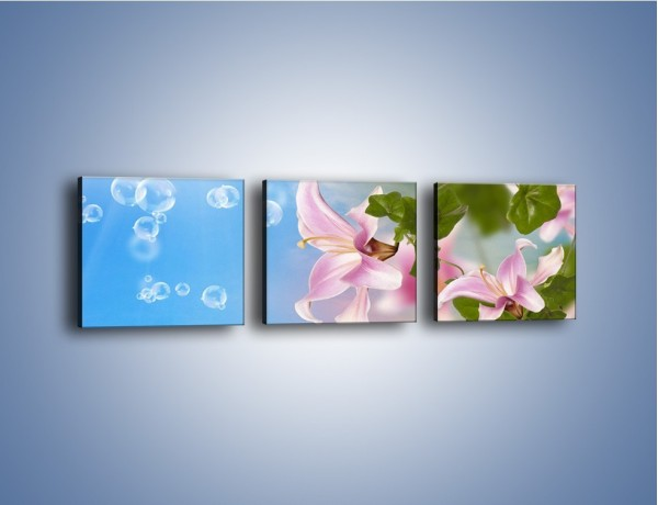 Obraz na płótnie – Mydlane bańki nad kwiatami – trzyczęściowy K669W1