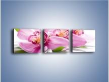 Obraz na płótnie – Biały kwiatowy stół – trzyczęściowy K688W1