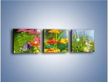 Obraz na płótnie – Bańkowy świat kwiatów – trzyczęściowy K691W1