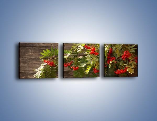Obraz na płótnie – Jarzębina w jesiennym wazonie – trzyczęściowy K692W1