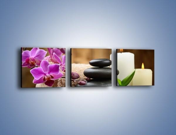 Obraz na płótnie – Kwiatowe masaże – trzyczęściowy K716W1