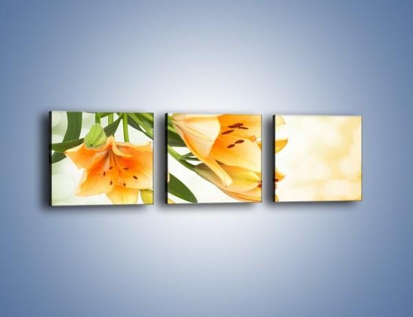 Obraz na płótnie – Łososiowe pachnące lilie – trzyczęściowy K755W1