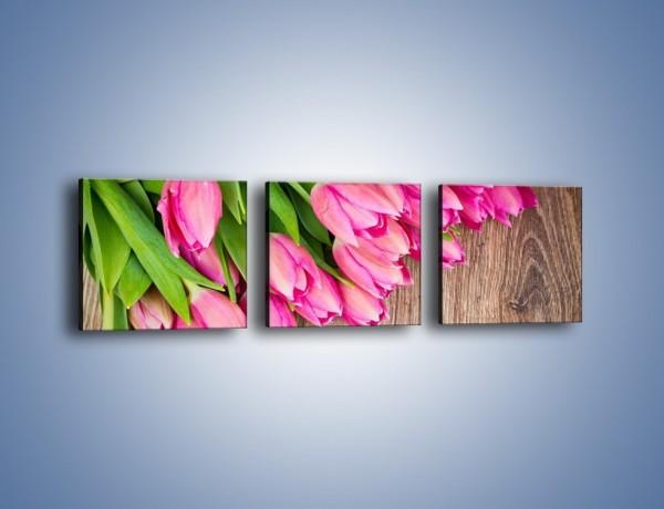 Obraz na płótnie – Do góry nogami z tulipanami – trzyczęściowy K807W1