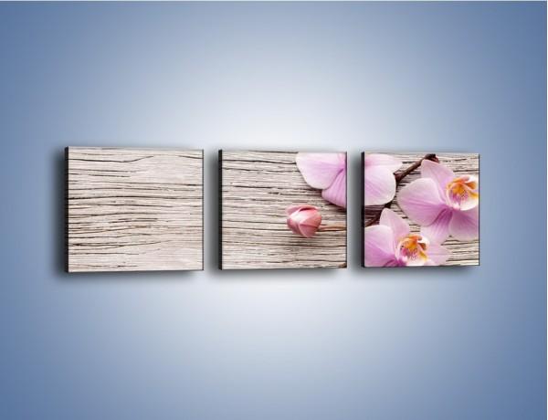 Obraz na płótnie – Kwiaty na drewnianej belce – trzyczęściowy K825W1