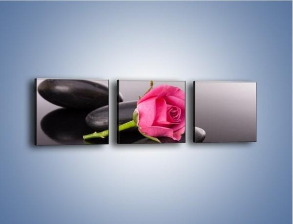Obraz na płótnie – Ścięta róża na czarnej tafli – trzyczęściowy K832W1