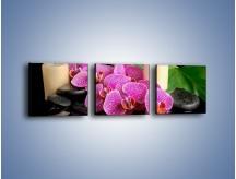 Obraz na płótnie – Ciepło ogień i kwiaty – trzyczęściowy K881W1